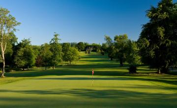 Dundrum House Golf & Leisure Resort: 2 Green Fees + A Buggy + Main Course (57% OFF)