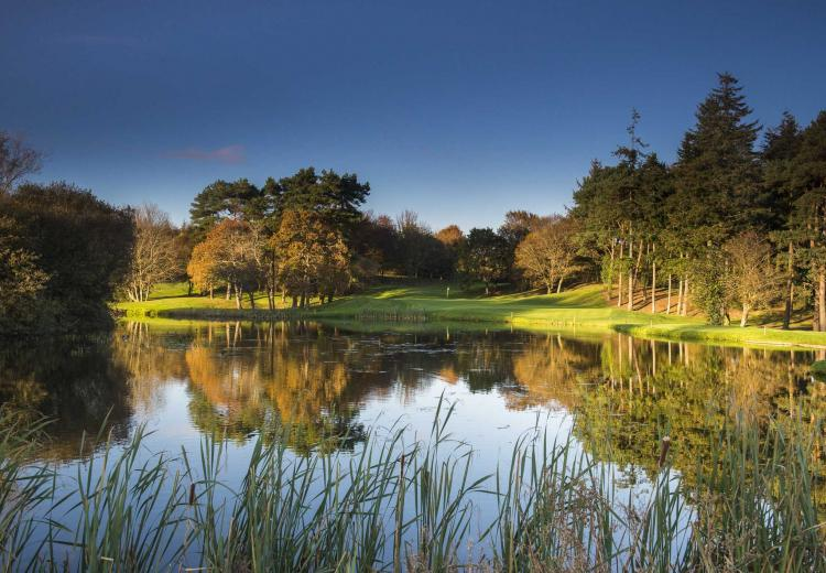 Druids Glen Hotel & Golf Resort: 2 or 4 Green Fees + A Goody Bag + Pull Trolleys (42% OFF)