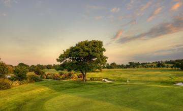 Charlesland Golf Club: 2 or 4 Green Fees  (20% OFF)