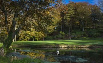 Druids Glen Golf Club: 2 or 4 Green Fees + Pull Trolleys  (39% OFF)